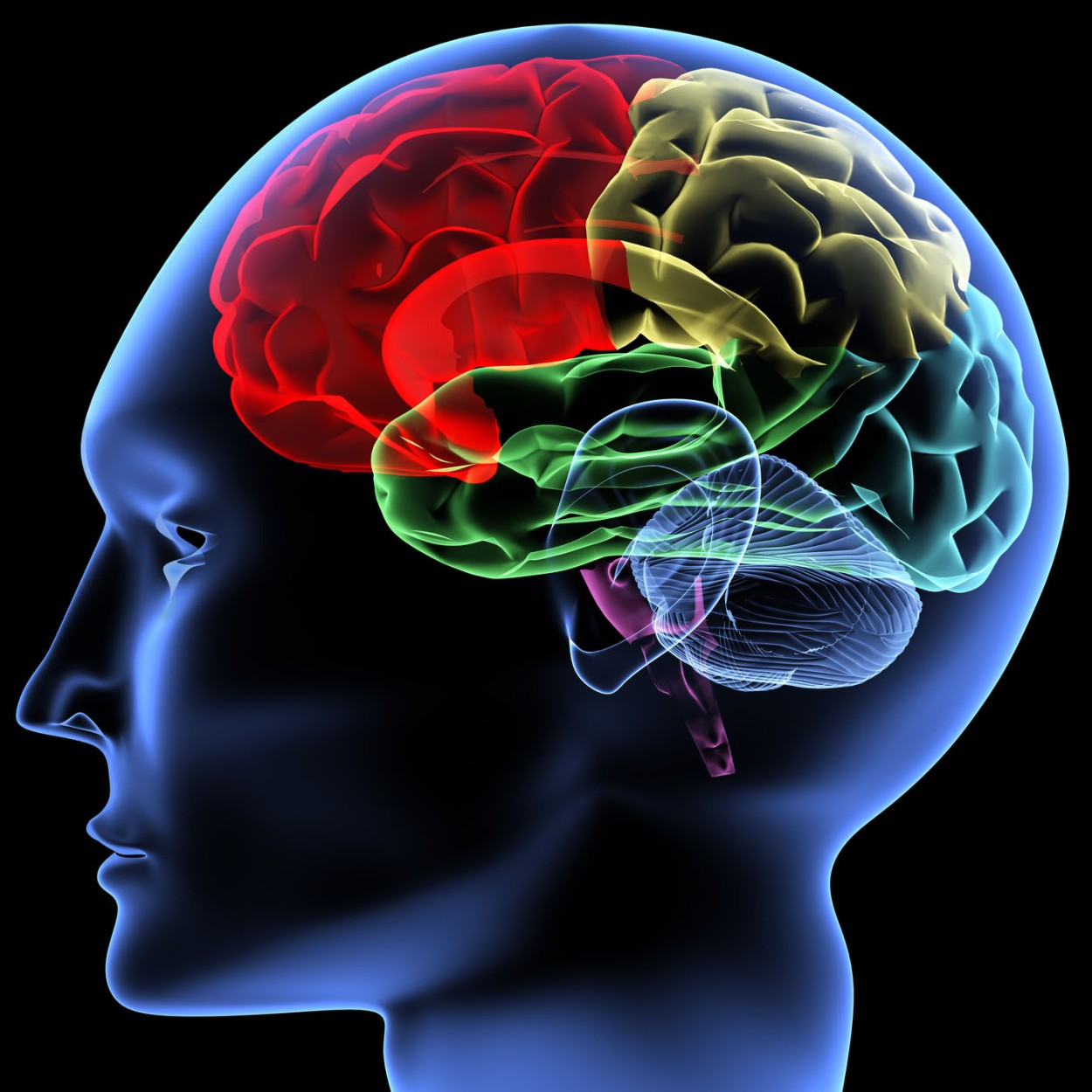 3 Apps For Working Out Your Brain Afpl Blog