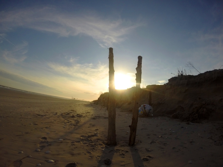 Dune Fence Posts 26th St.