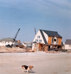 """""""Corner of Avalon and Eighth. House was removed from foundation, then settled back on it. Rebuilt and still there."""" - Jim Thatcher"""