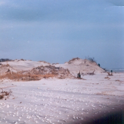 """""""The great dune at 48th Street. A 1950's Geological Survey map shows an elevation of 48'. Judging by the figures in the photo, about 25' was washed off- on a dune nearly 500 ft from the waterline. At the time I guessed that the dune had lost at least 250,000 cu ft of sand."""" - Jim Thatcher"""