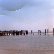 """Pilings exposed at 8th street. We had been in Avalon for over 20 years and never saw these. The must have been part of the old boardwalk which ran up to 8th, but no one recalled it had extended eastward this far."" - Jim Thatcher"