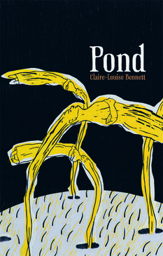 Pond by Claire-Louise Bennett.jpg