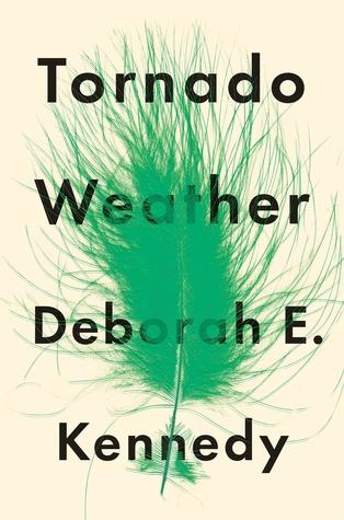 Tornado Weather by Deborah Elaine Kennedy.jpg