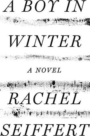 A Boy in Winter by Rachel Seiffert.jpg