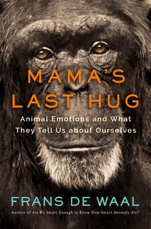 mamas last hug